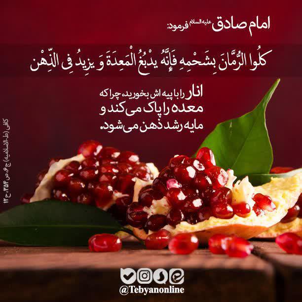 امام صادق علیه السلام: انار را با پیه اش بخورید، چرا که معده را پاک میکند و مایه رشد ذهن میشود.