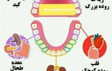 درد هر دندان و پوسیدگیِ بی علت آن علامتی است....