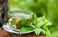 روزهای گرم چای نعناع بنوشید