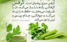 پیامبر_اسلام (ص): کرفس سبزى پیامبران است.